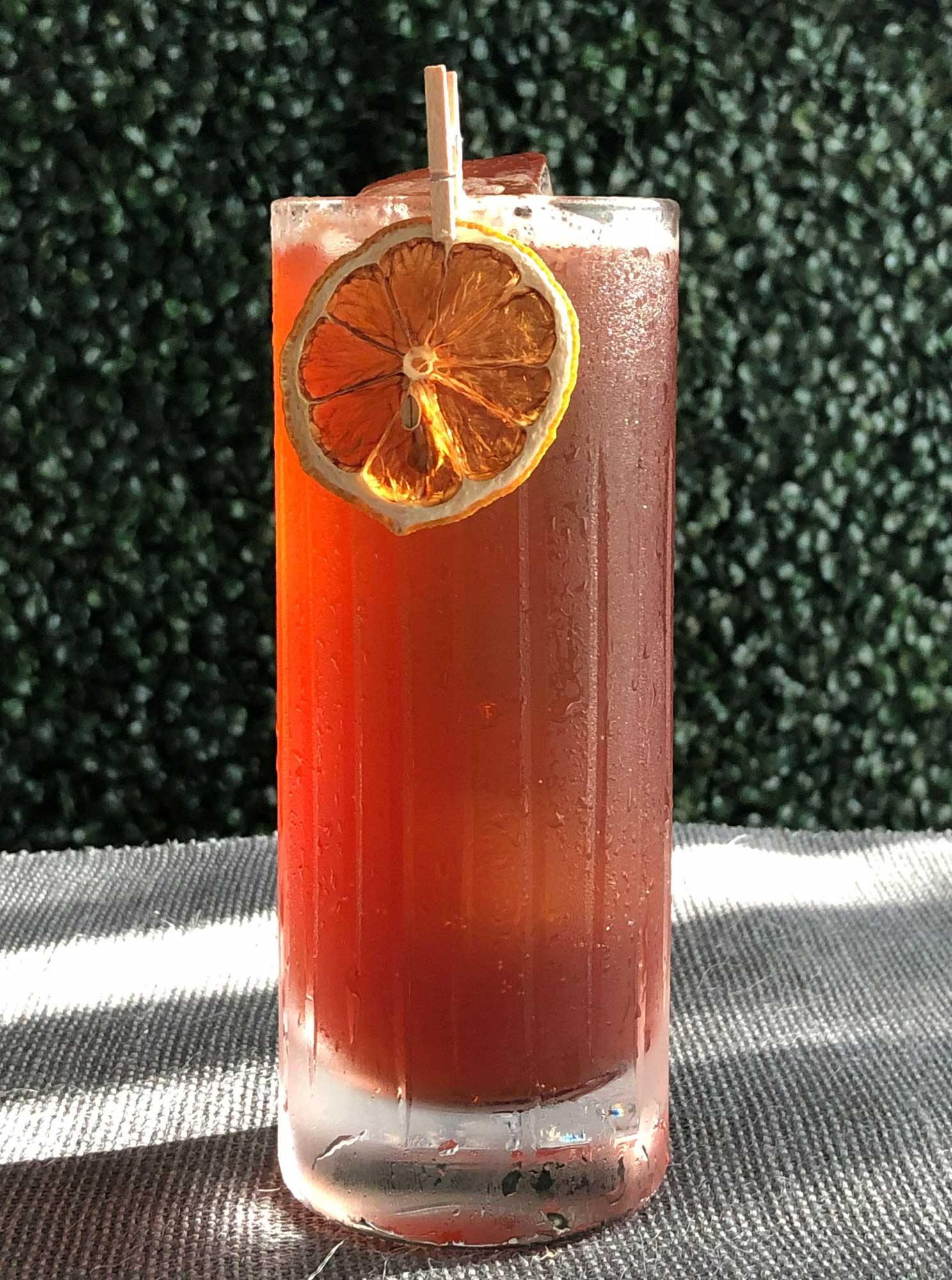 An example of the Damson Gin Fizz, the mixed drink (fizz) featuring soda water, Averell Damson Plum Gin Liqueur, and lemon juice; photo by Lee Edwards