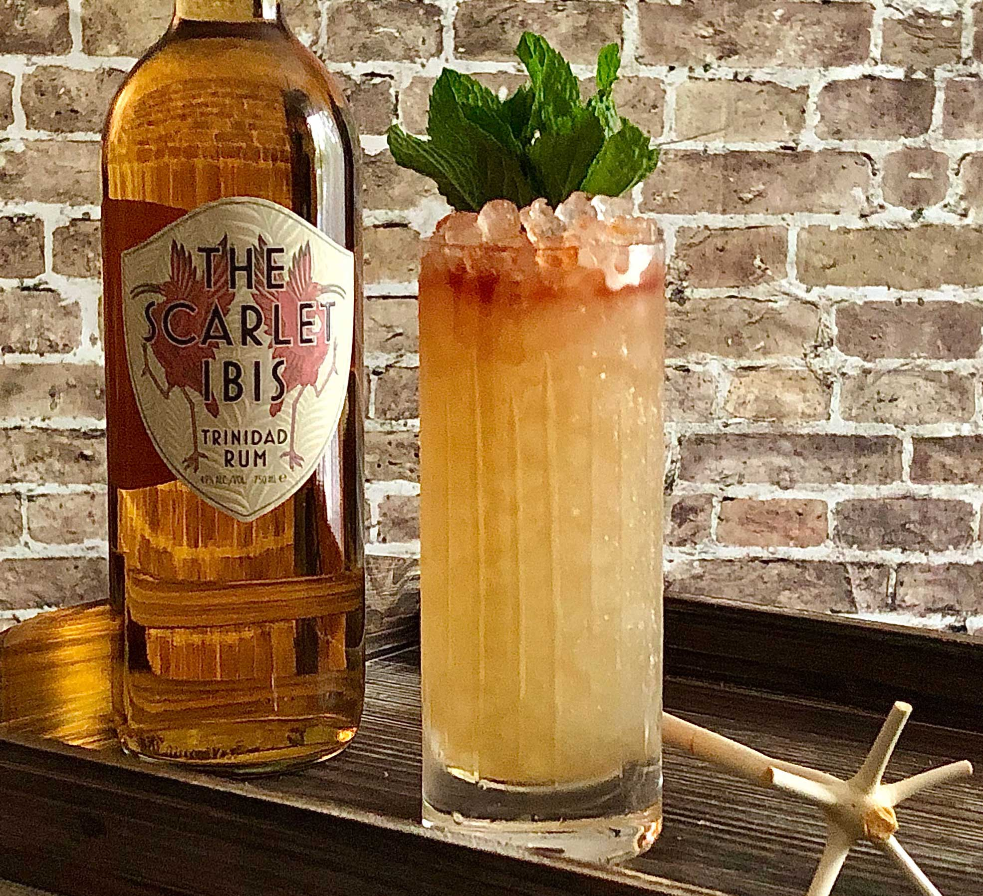 An example of the Queens Park Swizzle, the mixed drink (frappe) featuring The Scarlet Ibis Trinidad Rum, lime juice, rich demerara syrup, and Angostura bitters; photo by Lee Edwards